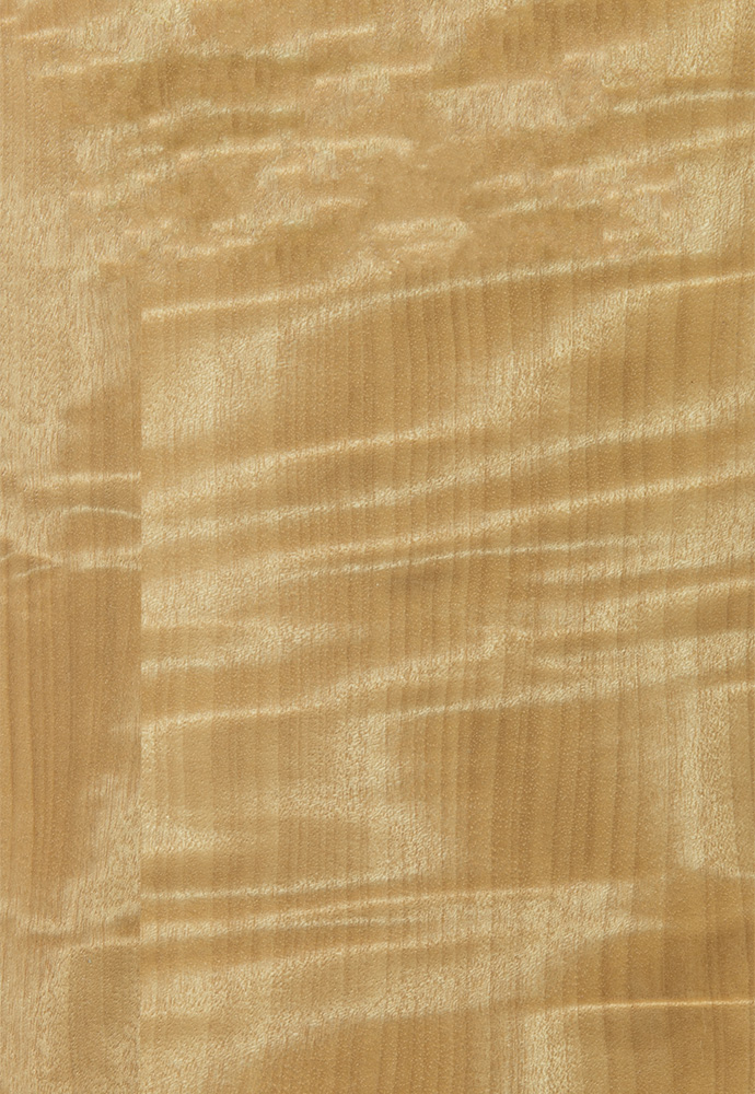 Quartered Anigre Natural Exotic Cabinet Finishes Amp Colors