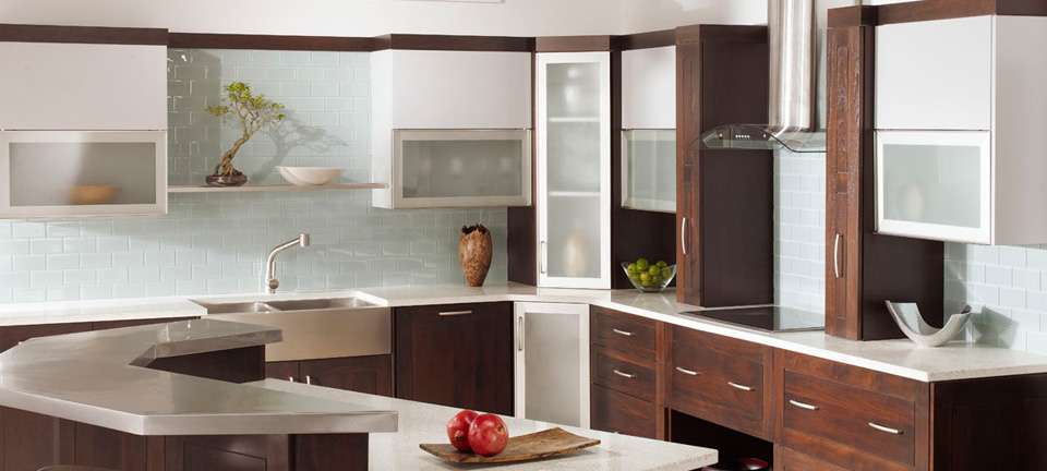 Kitchen Cabinets with Distinct Modern Look